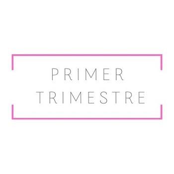Primer Trimestre 2019