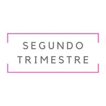 Segundo Trimestre 2018 DIF